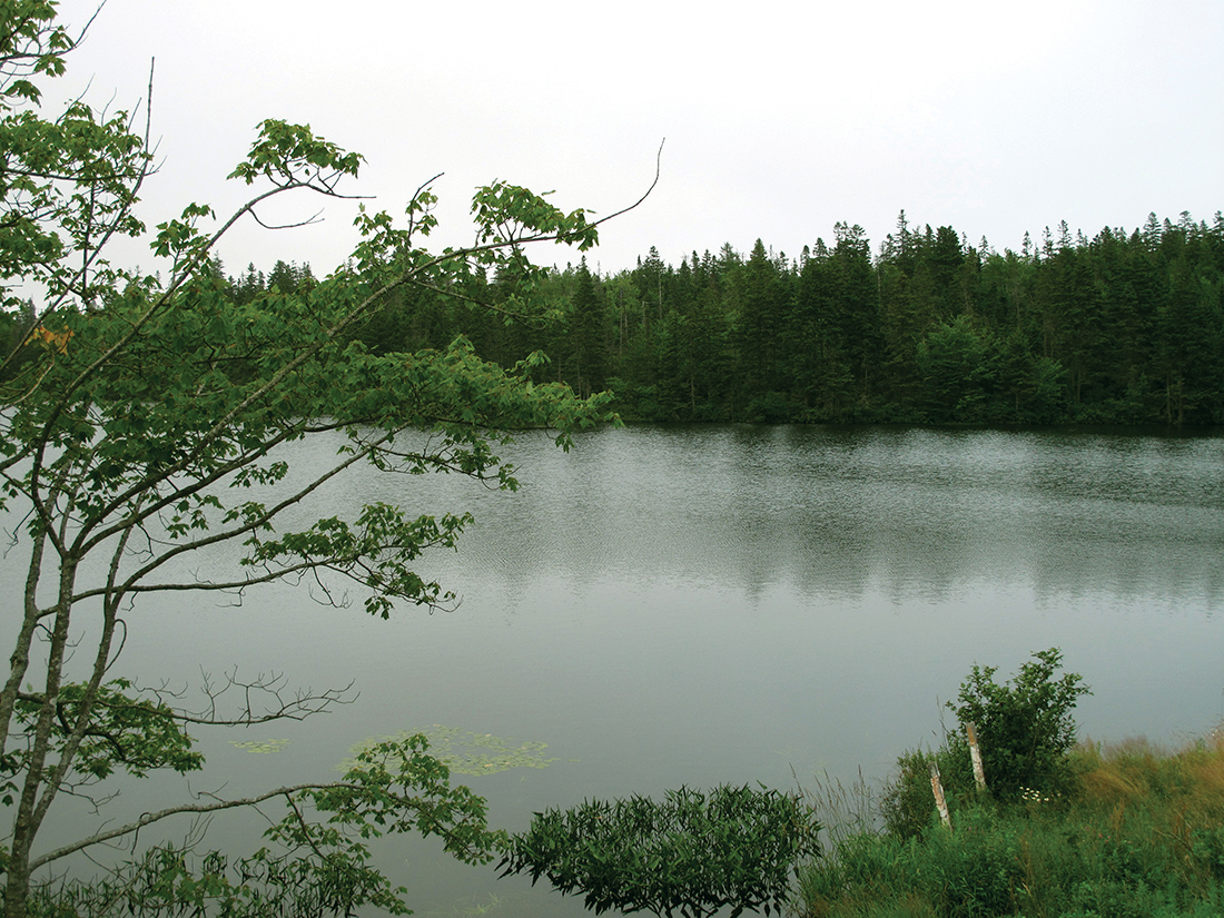 Lovett Lake, Beechville, Nova Scotia.